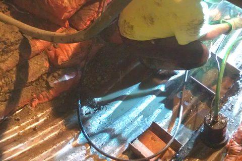 Cincinnati Zoo Detention Repair